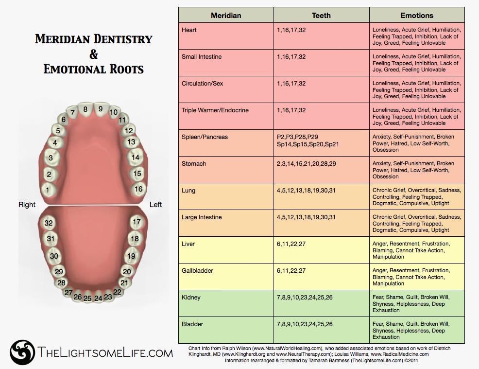 Meridian Dental Charts